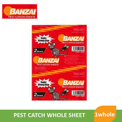 Picture of Banzai Pest Catch Whole Sheet - 002710