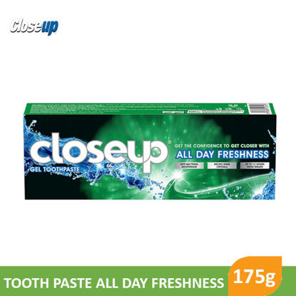 Picture of Close Up Menthol Fresh 175g - 95725